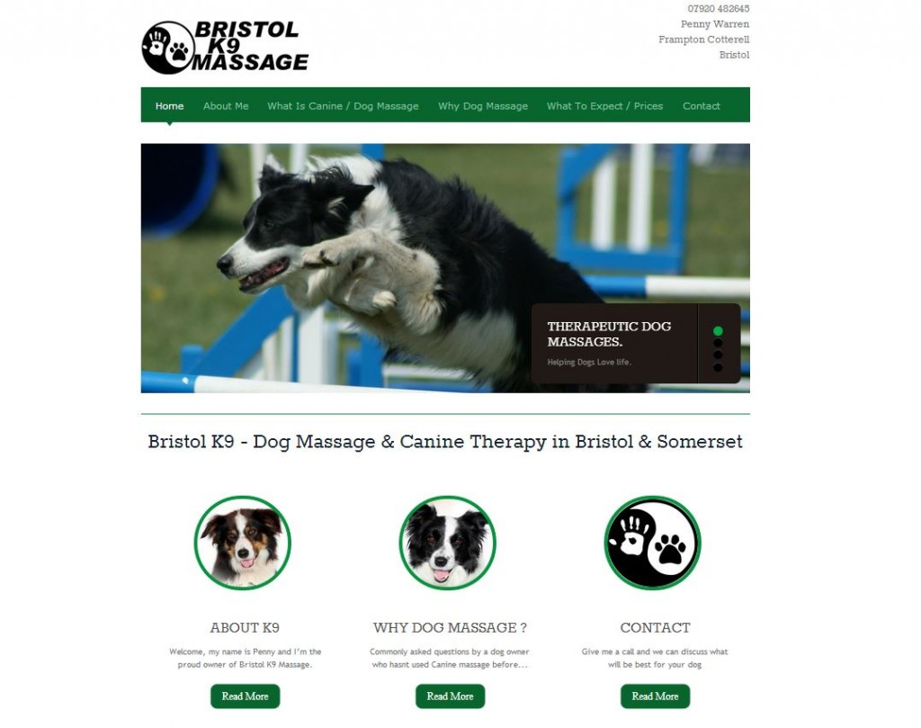ristol website design -dog massage