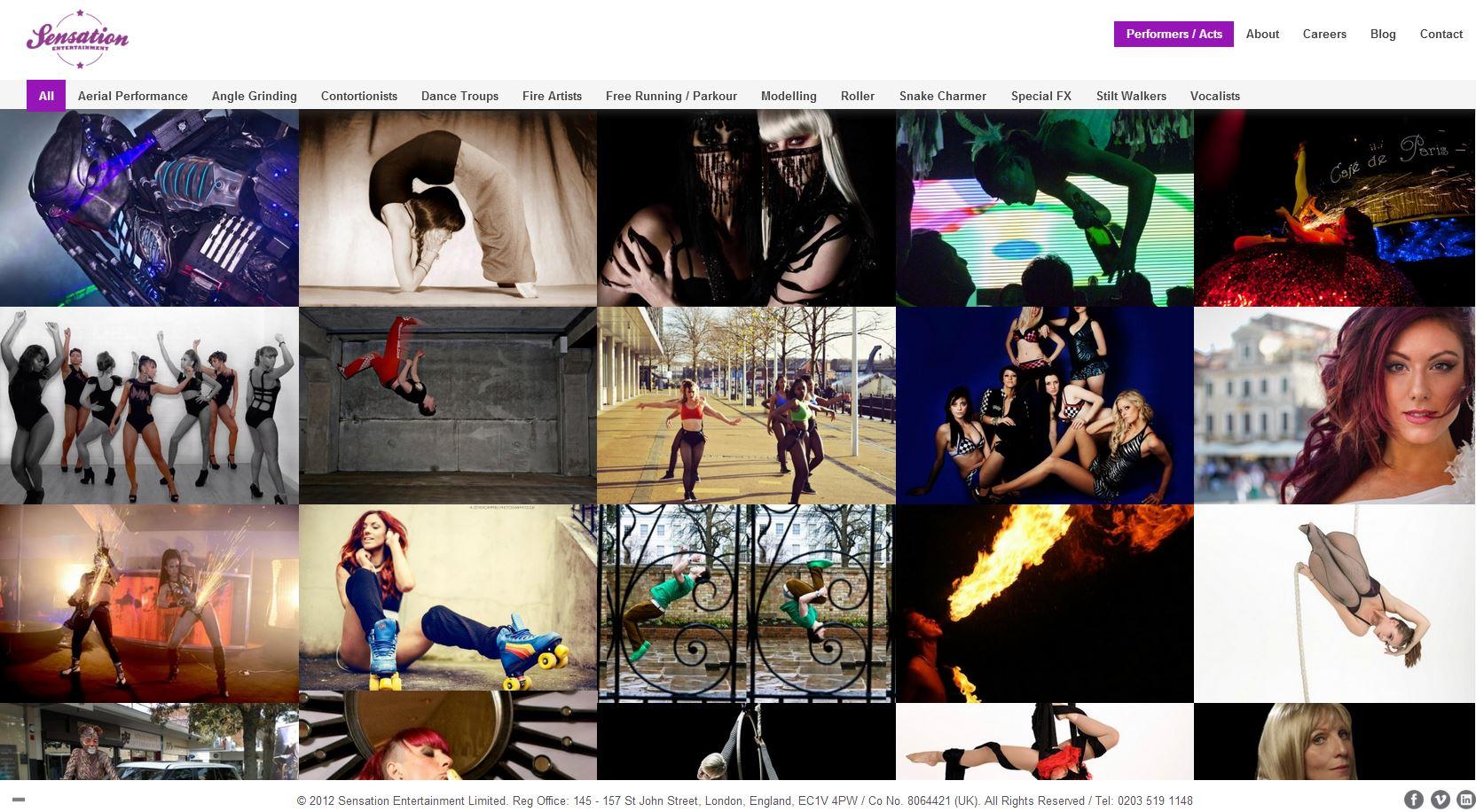sensation entertainment website customisation